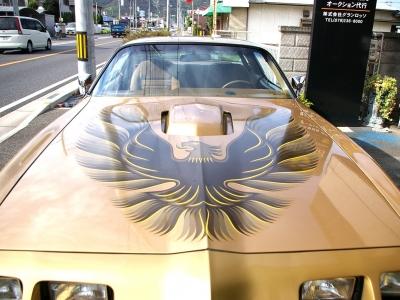 ★ボンネットに羽を広げる「ファイヤーバード」♪ ★このクルマの最大のポイントです♪