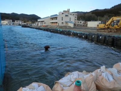 船止めが見えている個所が沈んでおります!船止めが1.5m〜2m以上上がっているのが通常です!