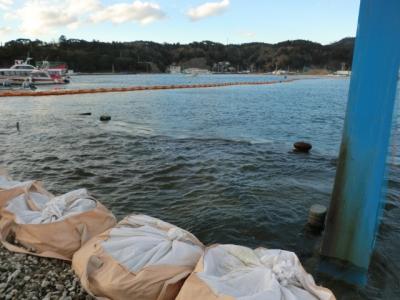 どの港も2mほど沈下しておりました!